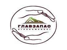 ГЛАВЗАПАС